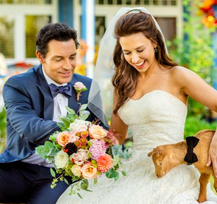David Nehdar & Lacey Chabert  Marriage Picture